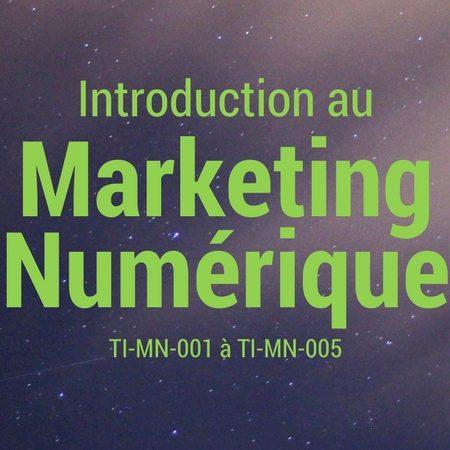 Introduction au Marketing Numérique (TI-MN-001 à 005)
