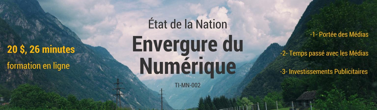 TI-MN-002 Envergure du Marketing Numérique