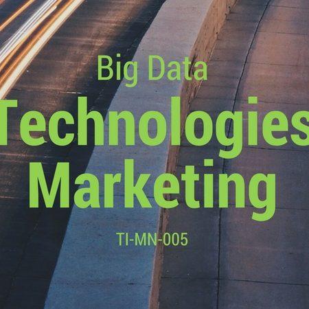 TI-MN-005 La Technologie du Marketing et le Big Data