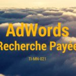 Recherche payée sur AdWords, et autres options publicitaires