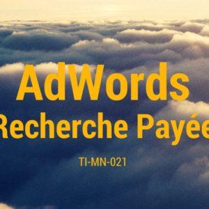Recherche payée sur AdWords, et autres options publicitaires