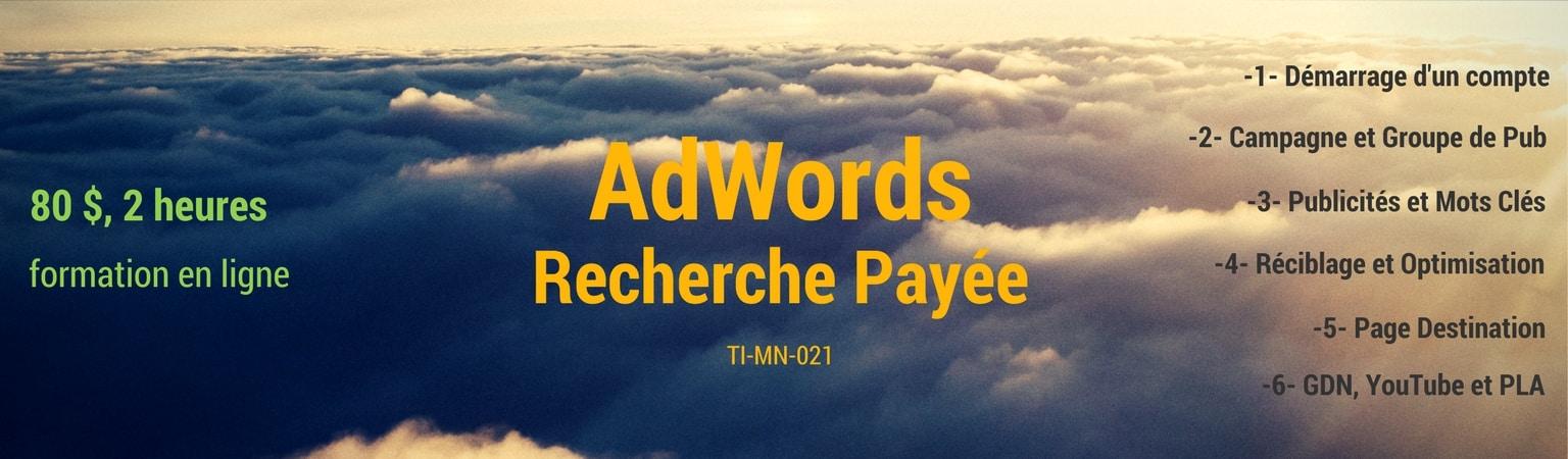 recherche payée sur AdWords
