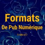 Les Formats Publicitaires Numériques