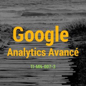Google Analytics Avancé