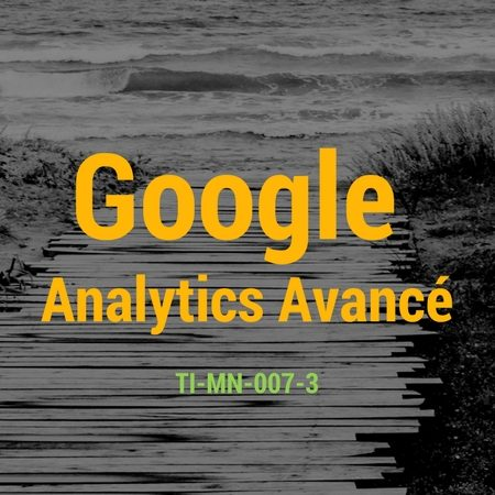 Description du cours Google Analytics Avancé