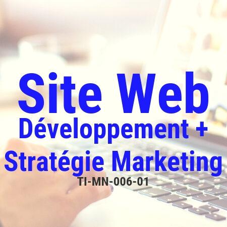 Développer un site Internet et des stratégies de marketing en ligne