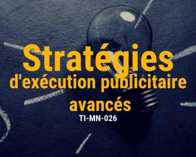 Stratégies publicitaire avancées en ligne